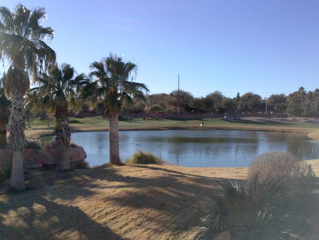 Hole 17 Arnold Palmer Oasis Golf Course - Mesquite, Nevada